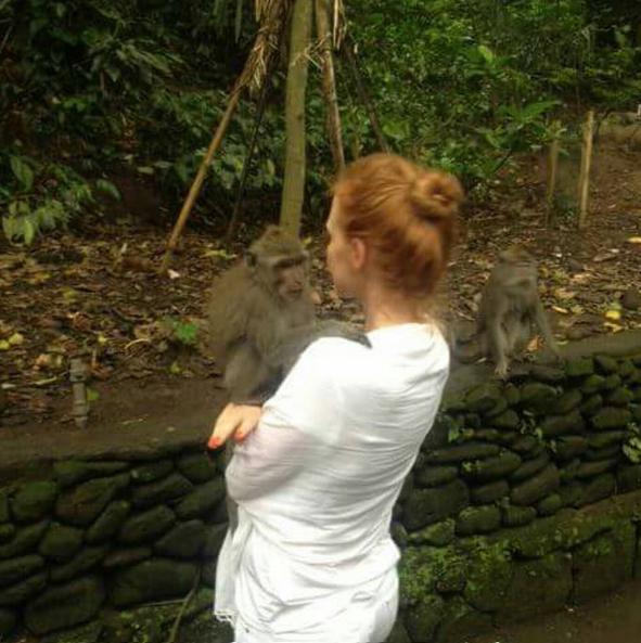 Jessica assina petição em prol de recursos para chimpanzés